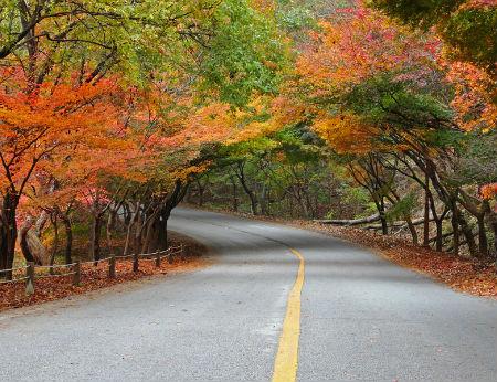 4 ngọn núi xinh đẹp giúp bạn hưởng trọn mùa thu Hàn Quốc