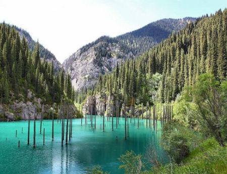 Khu rừng dưới nước tuyệt đẹp ở Kazakhstan