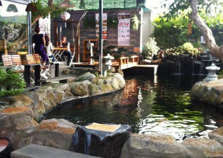 Quán cà phê ở Cần Thơ vừa uống vừa ngắm cá koi