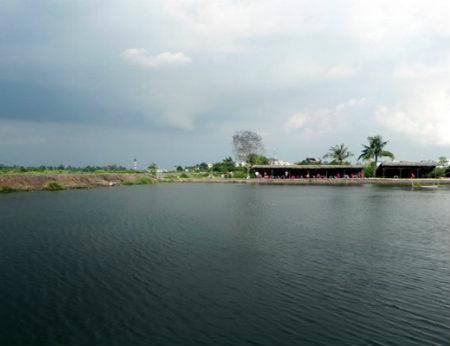 Câu cá Đồng Diều - Vùng quê yên ả tại Sài Gòn