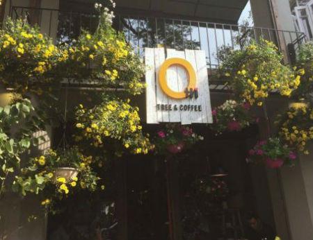 Ohi Tree & Coffee - Khu vườn bí mật tại Hà Nội